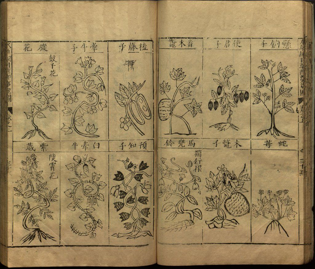 The Impacts of Li Shizhen's Bencao gangmu – Retrospect Journal